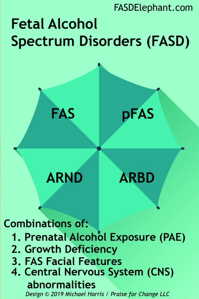 Four parts to an FASD diagnosis